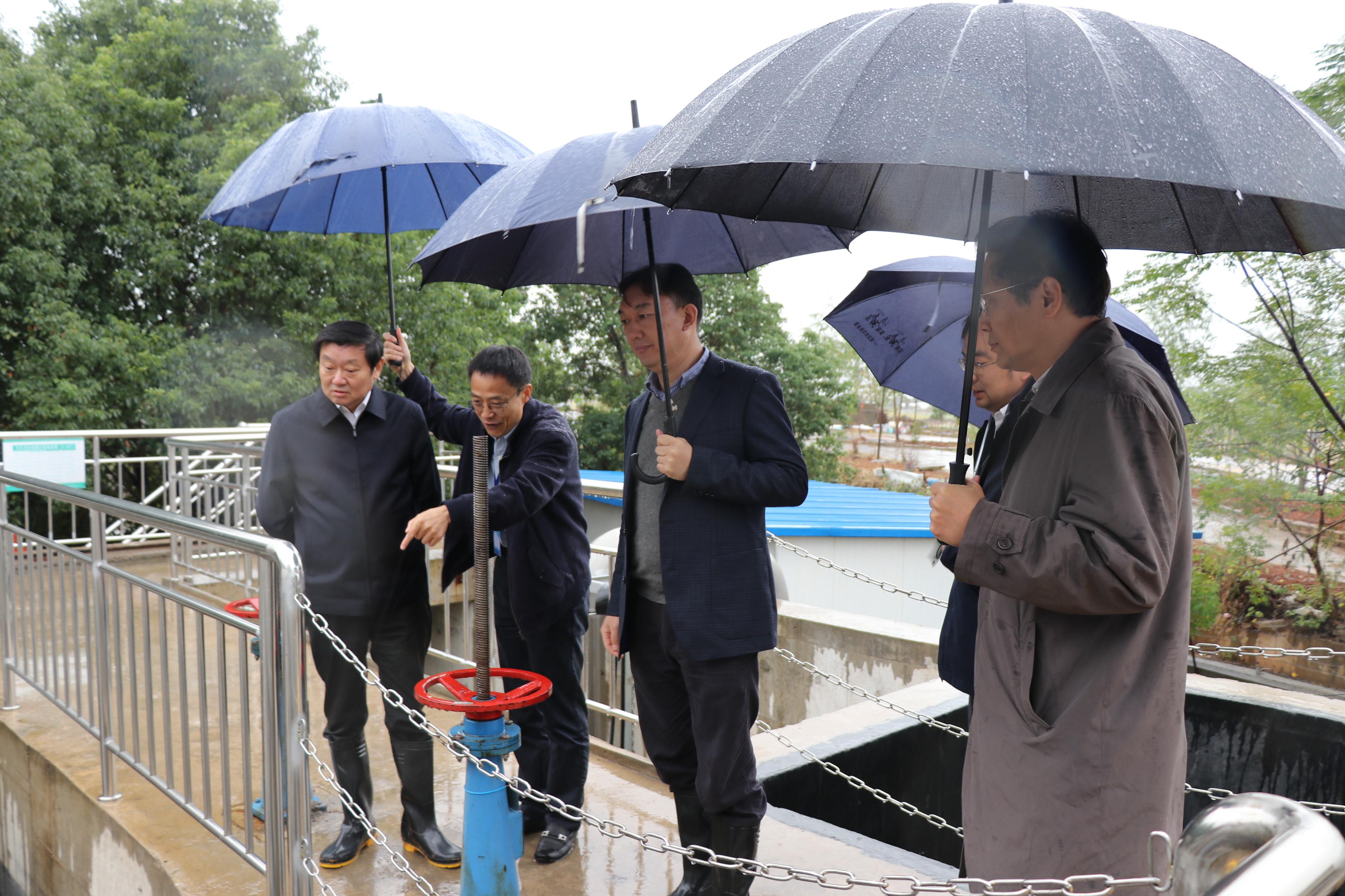 汪祥旺副市长(左一)调研君集汤逊湖项目.JPG